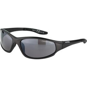 Alpina Wylder Glasses tin matt/black mirror